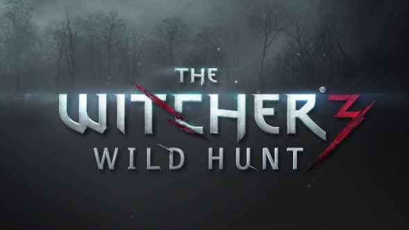 Release Date of The Witcher 3 Wild Hunt – An Open Letter