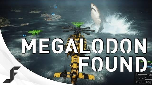 MEGALODON FOUND