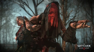 The_Witcher_3_Wild_Hunt-One_of_the_Crones