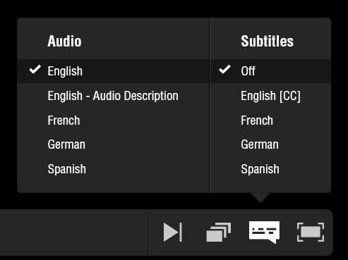 Netflix-audio-and-Subtitles