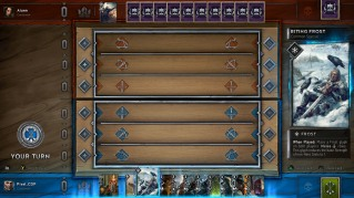 The_board