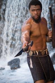 Black Panther (23)