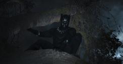 Black Panther (25)