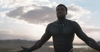 Black Panther (6)