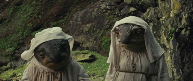 Star Wars The Last Jedi (17)